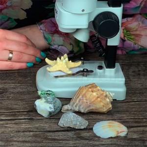 Первый микроскоп и первые ошибки в работе с ним